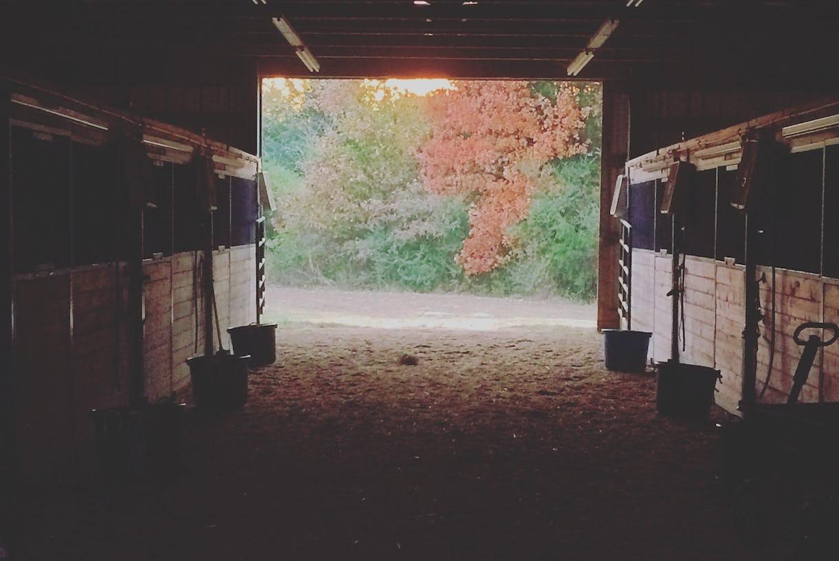 Daybreak Farm & Riding Academy